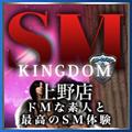 SMキングダム 上野店