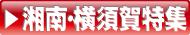 湘南・横須賀風俗|ヘブンネット